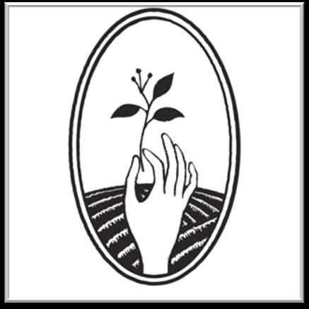 Chic-des-plantes